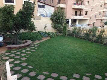 Cozy Gardens